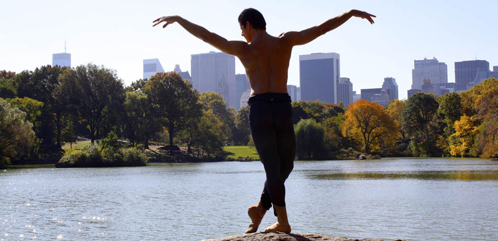 Anatomy of a Male Ballet Dancer