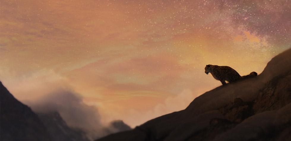 Gyamo: Queen of Mountains